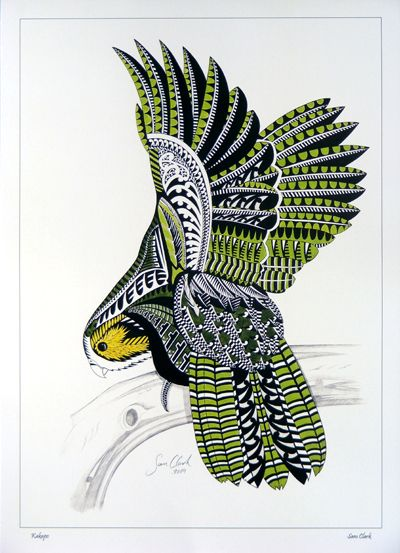Sam Clark print Kakapo New Zealand art kura gallery...a little bizarre