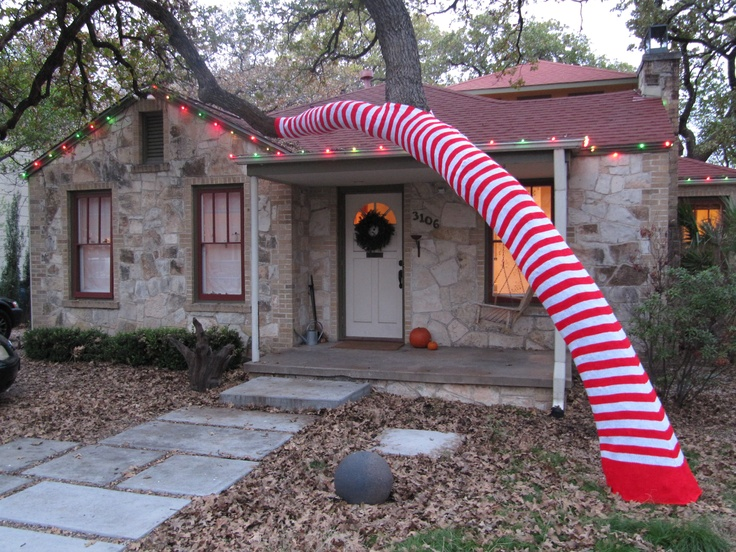 Dr. Seuss Candy Cane in my front yard in Austin ,TX