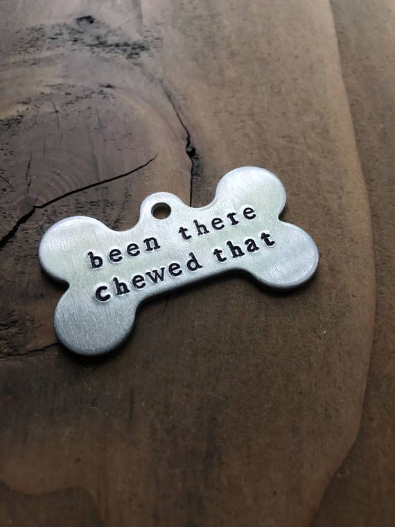 Rudedog Pet Id Tags From Thruffty Pup Are A Hilarious Way For Your