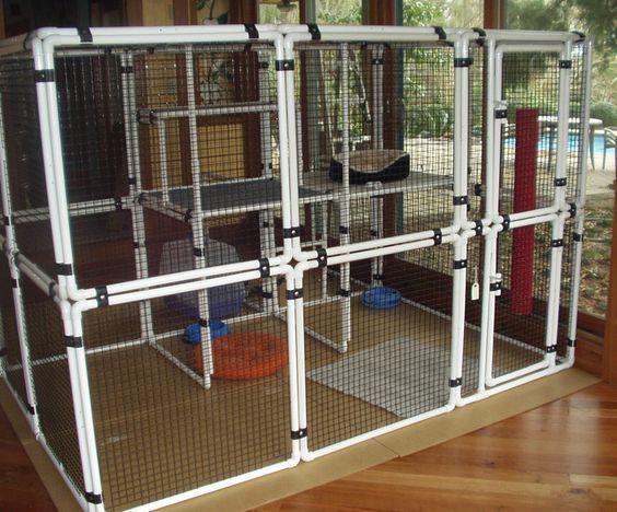 Portable Room Enclosure : Pet diy enclosure cats pvc projects pinterest