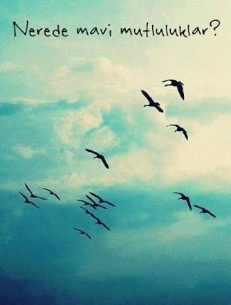 Sen bilmezsin gözümün daldığı uzaklarda seni aradığımı.. Seni bilirim kimse kadar basit sevemezdin.. Ve uçabilseydin eğer, bu kadar uzağa gidemezdin.