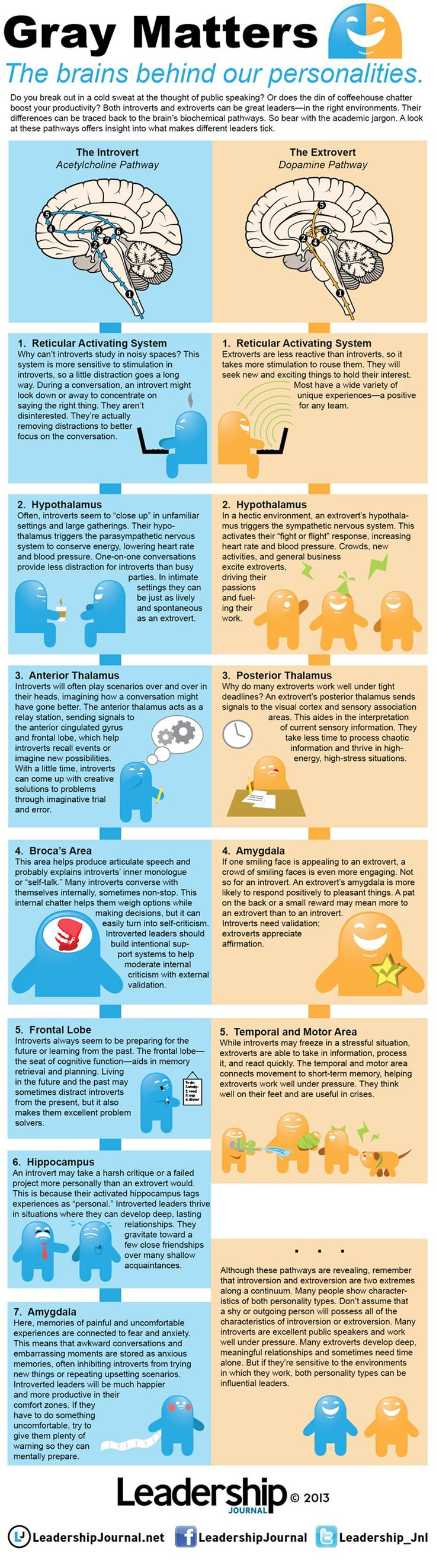 Differences in the Brains of Introverts and Extroverts.  Most likely we are all a blend of BOTH...not just one or the other.