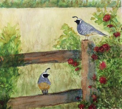 Cailles, aquarelle par Annie Collette