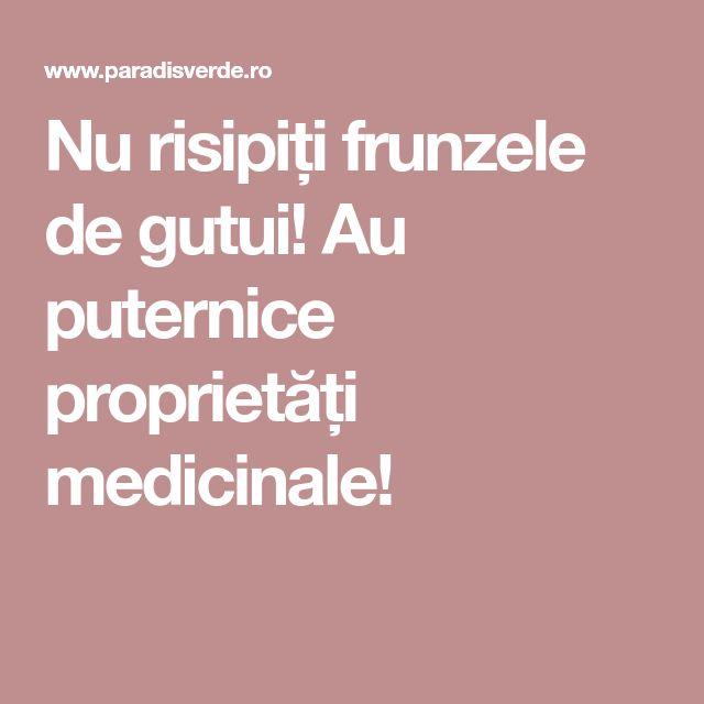 Nu risipiți frunzele de gutui! Au puternice proprietăți medicinale!