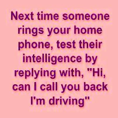 Humor quotes, funny pics, humourous, jokes funny, jokes and quotes, Lmao quotes  …For the best humour quotes and hilarious sayings visit www.bestfunnyjokes4u.com/lol-funny-cat-pic/
