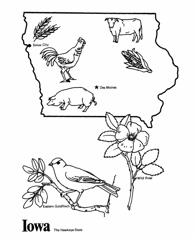 Iowa state outline coloring page cc cycle 3 week 6 for Iowa coloring pages