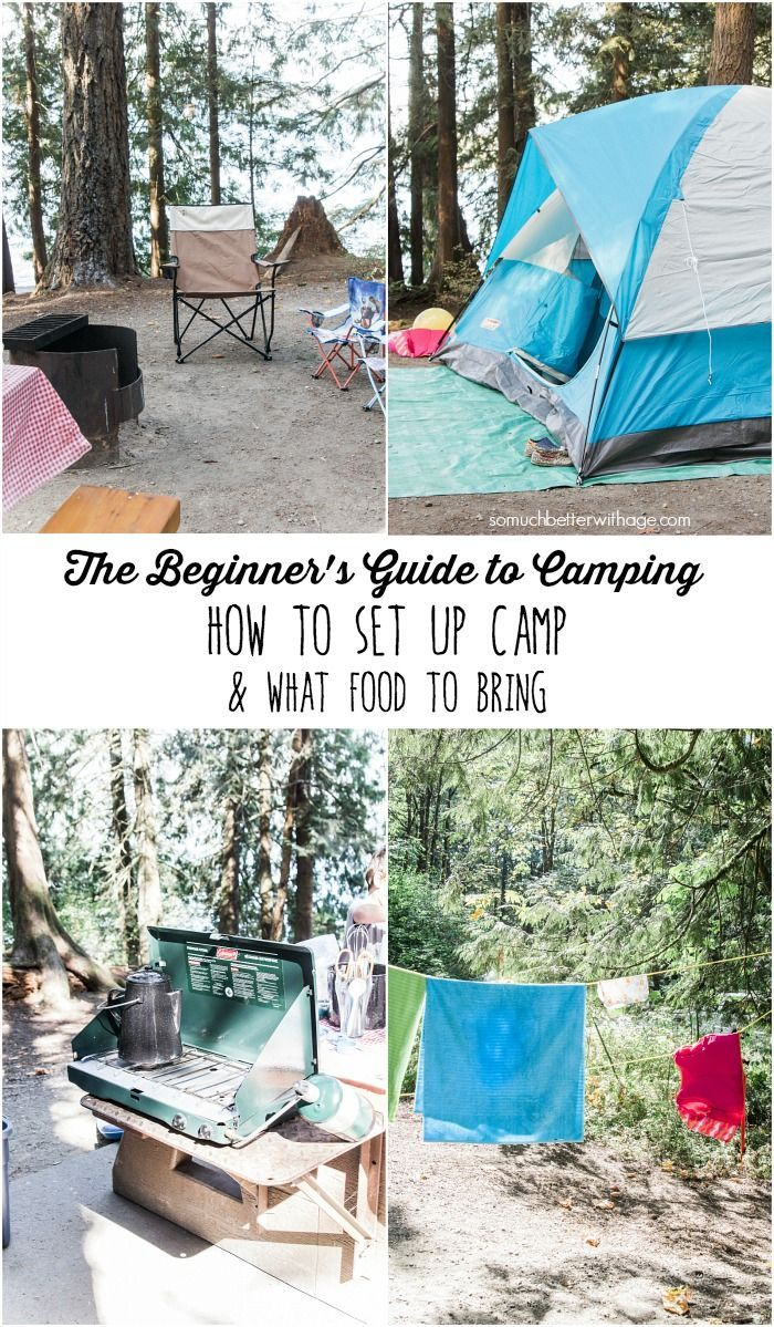 The Beginner's Guide to Camping - How to Set Up Camp & What Food To Bring