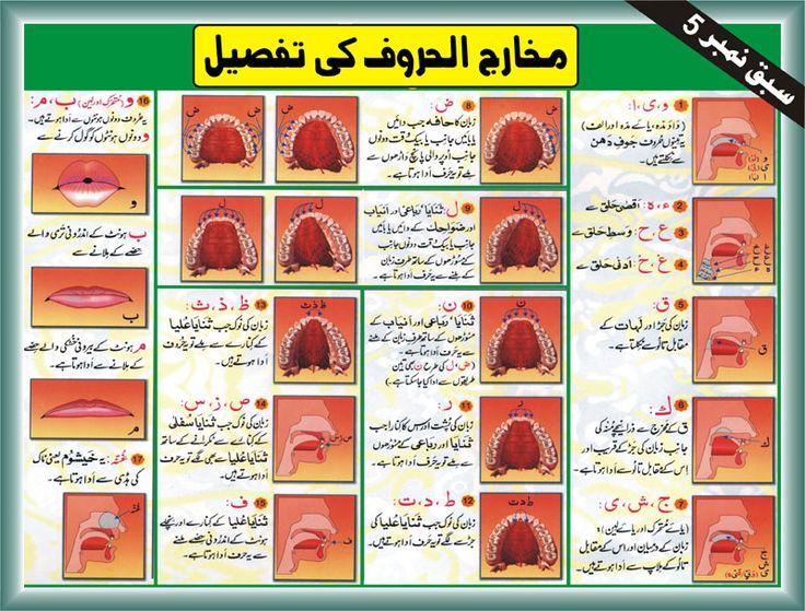 Tajweed Rules In Urdu Makhraj Of All Arabic Letters Pdf Image Online Online Quran Reading Learn Quran Tajweed Quran
