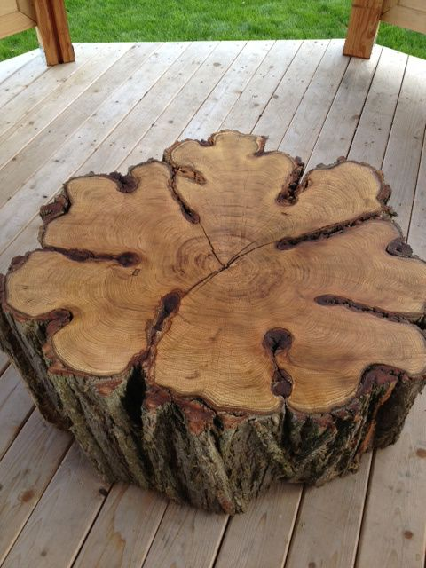Tag Archives: Tree Trunk Coffee Table