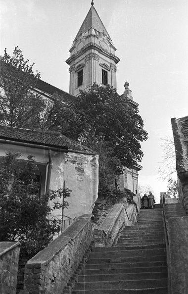 Kertváros. Sopronbánfalvi Pálos-karmelita templom és kolostor felé vezető lépcső.1955