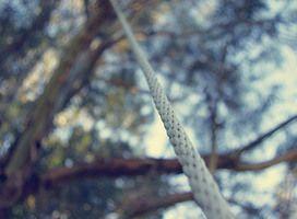 Secreto 685 | Canopy en La Confianza | Exterior | Lunahuaná | Lima