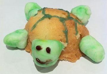 Urban Turtle - Contact Us