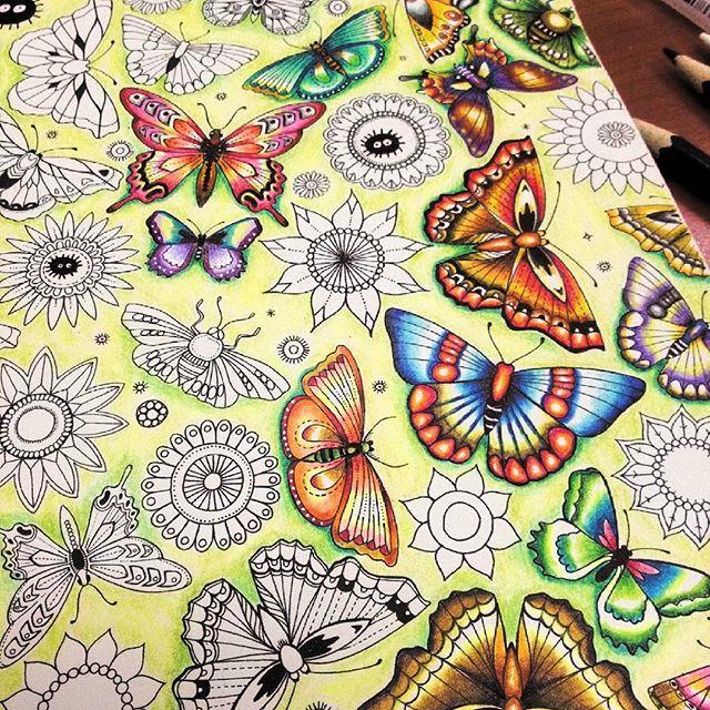Secretforestocean Secretgarden Secretgardencoloringbook Johannabasfordenchantedforest Johannabasford Johannabasfordsecretgarden Colorindolivrostop
