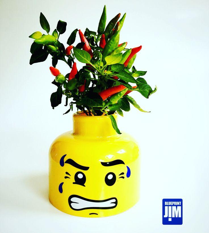 Chilli hair plant topper