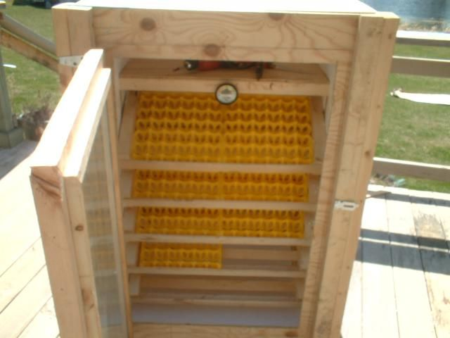 how to build an egg incubator