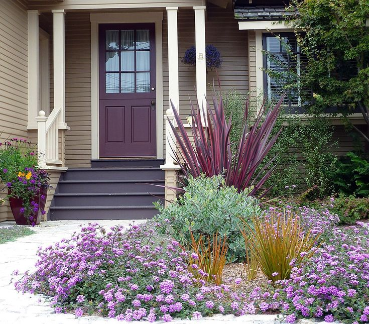 The dark steps look great against the purple door and beige siding.