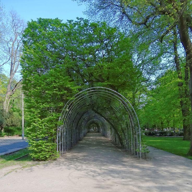 Bindaż, berso, chłodnik czy kolebka to element architektury ogrodowej znany już od czasów renesansu. W Kołobrzegu jest ozdobą Parku Koncertów Porannych przy ul. Towarowej. I jest to prawdziwa perełka, ponieważ bindaż jest niezwykle rzadkim obecnie elementem założeń parkowych w Polsce. Kołobrzeski bindaż został założony w połowie XIX wieku. Photo by GB.  #architektura #Kolobrzeg #Kolberg #bindaż