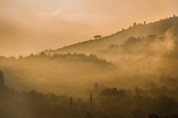 Mist in the mountains of Samos