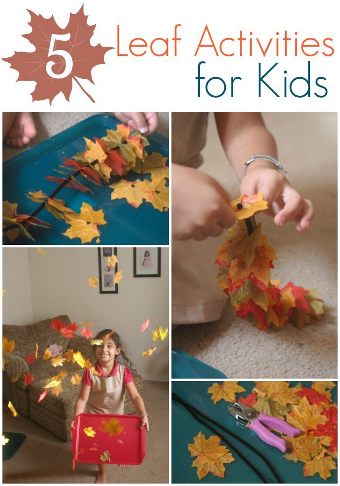 5 Leaf Activities for Kids for Fall.
