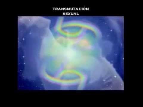 El Despertar de la Conciencia - Conocimiento de Si Mismo - YouTube