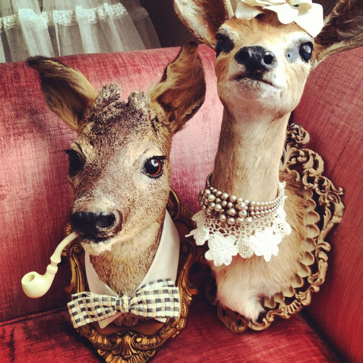 Mrs B Pearl Is All Gussied Up And Ready For Easter Vintage Reworked Steinbuck Deer Mount. $525.99, via Etsy.