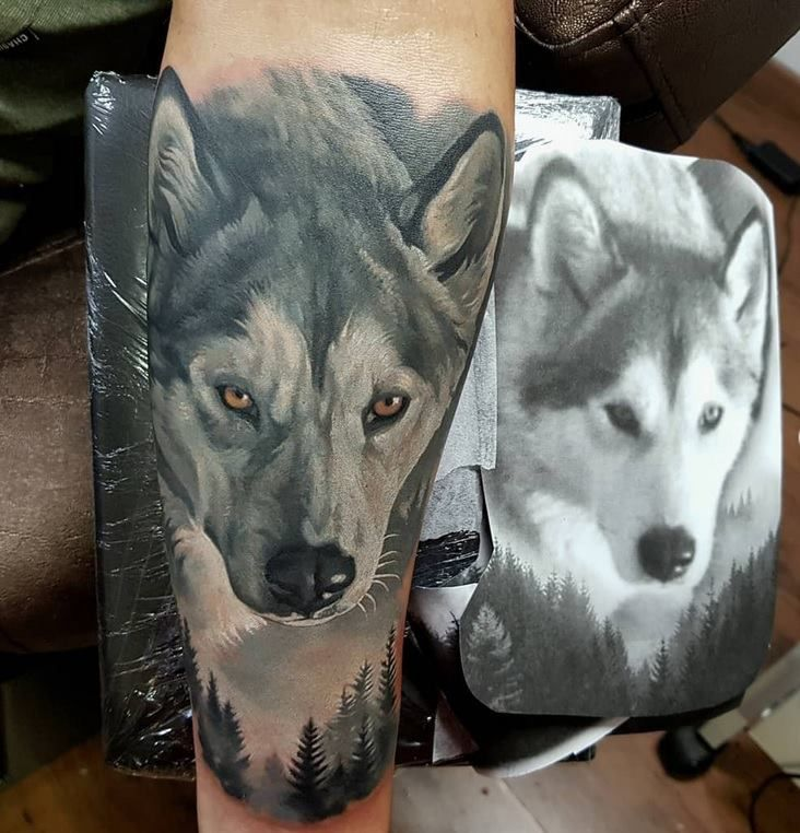 Realistic Color Wolf Tattoo Made In By Giena Revess Wildlife Tattoo Tattoo Artists Color Tattoo
