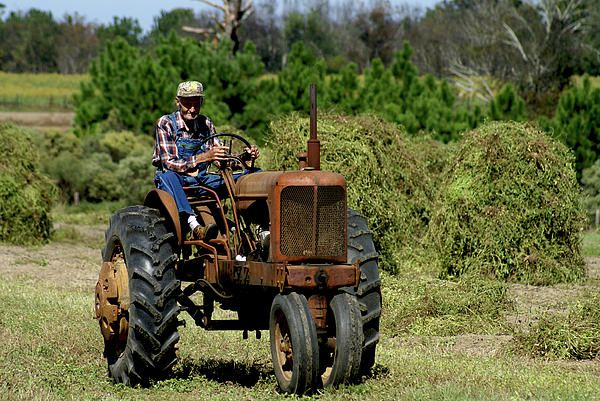 Old farmer, Old tractor
