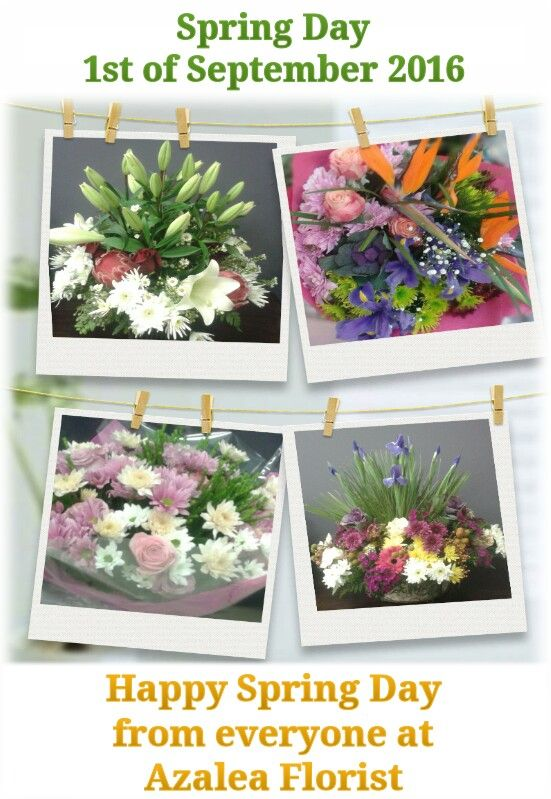 May flowers bloom where ever you walk May birds sing where ever you rest  May peace, love and happiness always light your way  Feel free to contact us on 013 244 1020, email on azaleabloemiste@gmail.com or simply just pop into our store at Middelburg Mall.