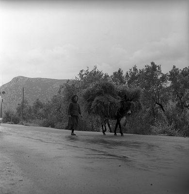 lamia, greece may 1959   peasant with donkey φωτογραφία Nick Dewolf