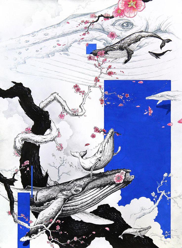 #Pen #illustration #humpback #whale #illust #art / Megaptera novaeangliae / Japanese apricot flower / size - 645*480 / 0.38mm pen, poster color)
