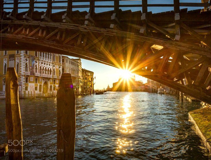 Sunrise under the Accademia bridge - Sunrise under the Accademia bridge Grand Canal Venice Italy.