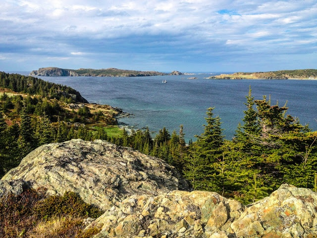 "The ""garden"" view from Paradise B, Twillingate, Newfoundland"