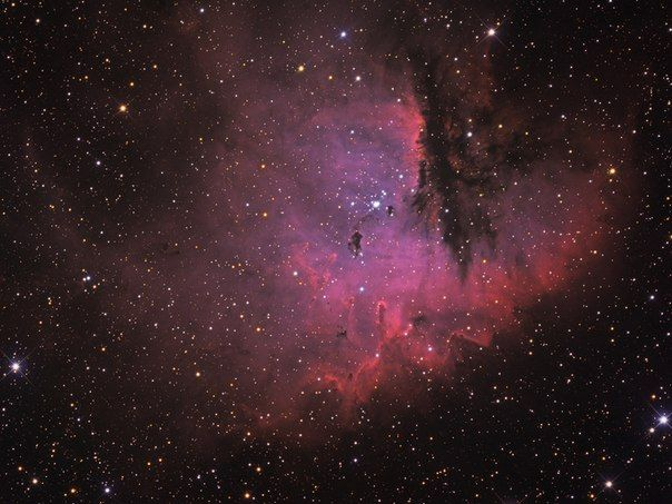 Туманность Пакман / Astro Analytics