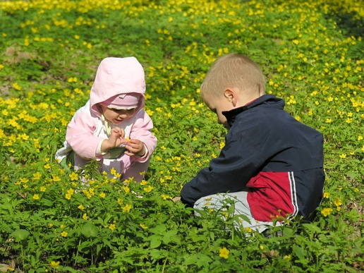 Let Nature Teach Your Child - Modern day urban lifestyles, with its fast cars, glitzy malls and ever present technological gadgets leaves us with little time to connect to .. from KidsDesk.net