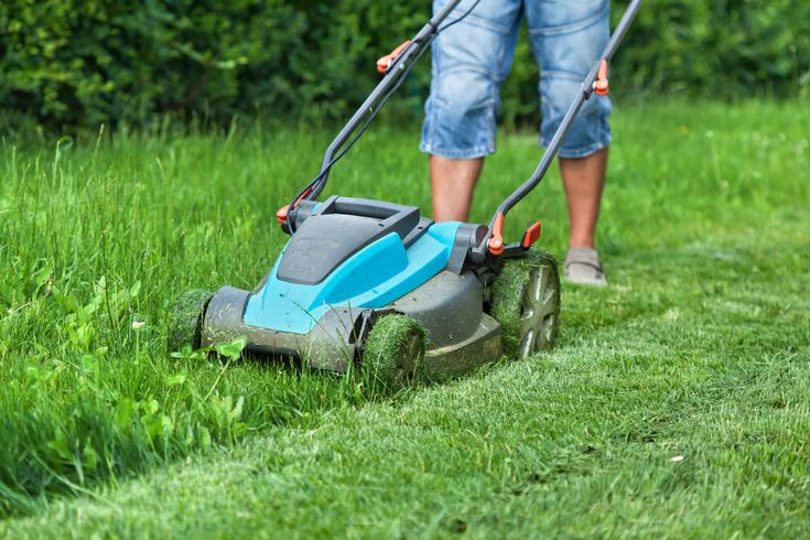 Need a small lawn mower? This is the ultimate list of 10 really good small lawn mowers that includes push reel and walk-behind models that are compact so they're light and ideal for small patches of grass.