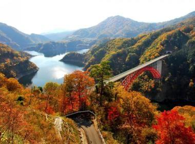 Quelle est la meilleure saison pour partir au Japon ? |vivrelejapon.com