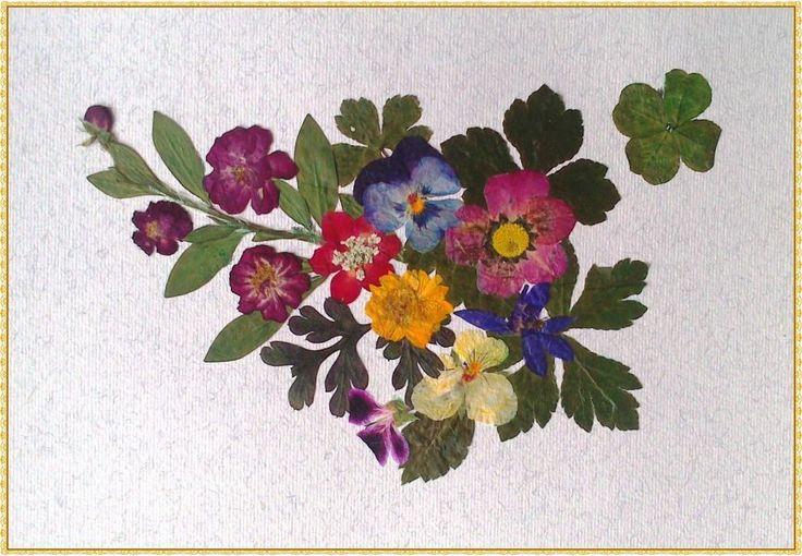 Bilder, welche die Glück bringen Ich Verkaufe die Bilder, welche die Glück bringen. Sie ist von getrockneten des mediterranen Kräutern und Blumen, einschließlich der vierblättrige Klee und andere