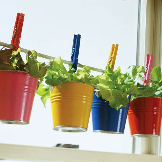 Simple Salad-Garden Containers: Kitchens Window, Gardens Ideas, Container Gardens, Indoor Herbs, Buckets, Cute Ideas, Plants, Herbs Gardens, Tension Rods