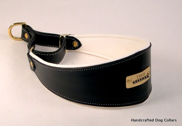 Custom Leather Martingale Collars l Leather Martingale Dog Collar Padded