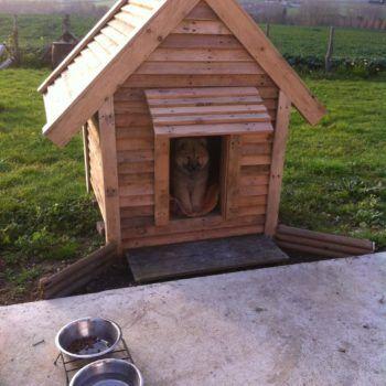 25 best ideas about cabane pour chien on pinterest. Black Bedroom Furniture Sets. Home Design Ideas