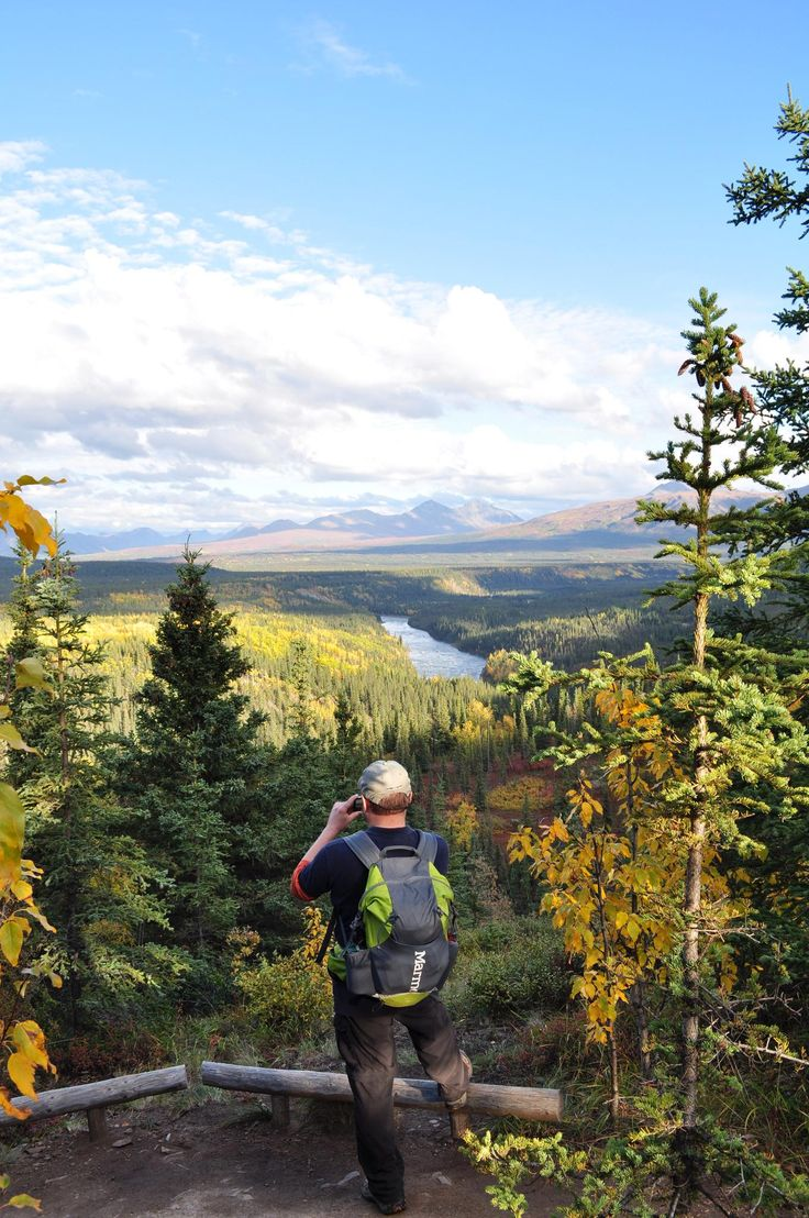 3 day Denali National Park itinerary. If you've never been to Denali National Park & Preserve, it's helpful to have a plan to ensure you see and do it all.