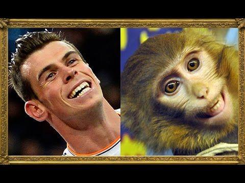 25 Footballers Who Look Like Animals - YouTube