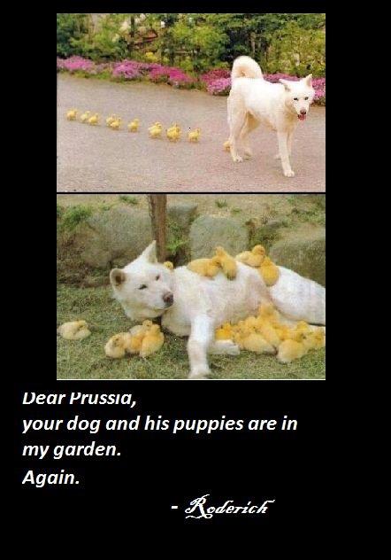 Prussia's dog by AleItaly1998.deviantart.com on @deviantART