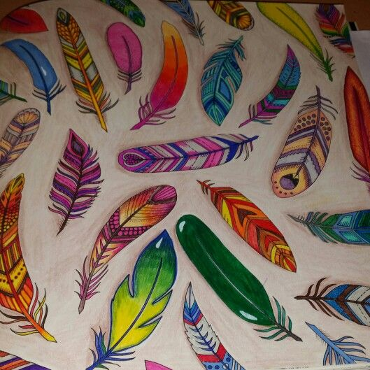 Enchanted Forest Feathers Page Colored