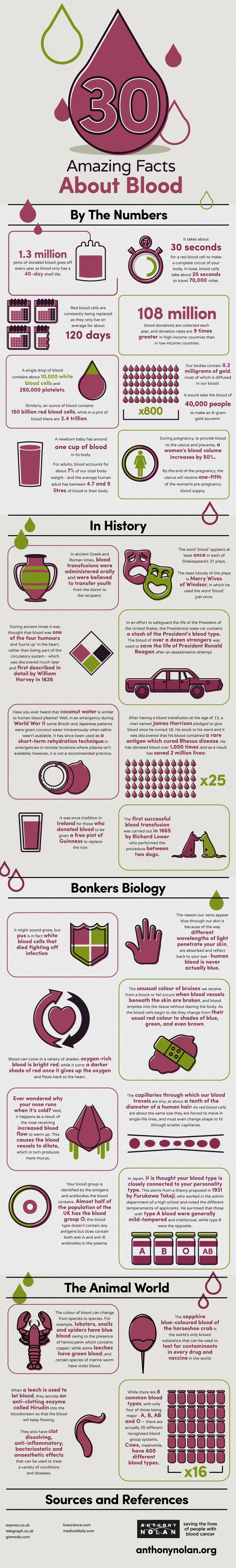 30 Amazing Facts About Blood #infografía #infographic