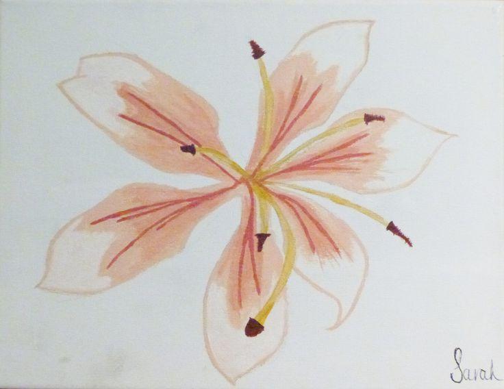 Lily - Acrylic on Canvas - Sarah Coggan