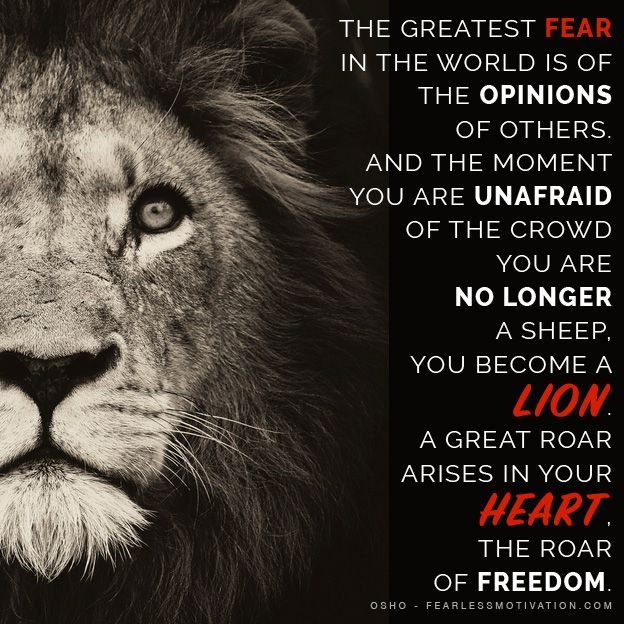 Motivational Quotes With Lion Images: LION QUOTES & Motivational Pictures