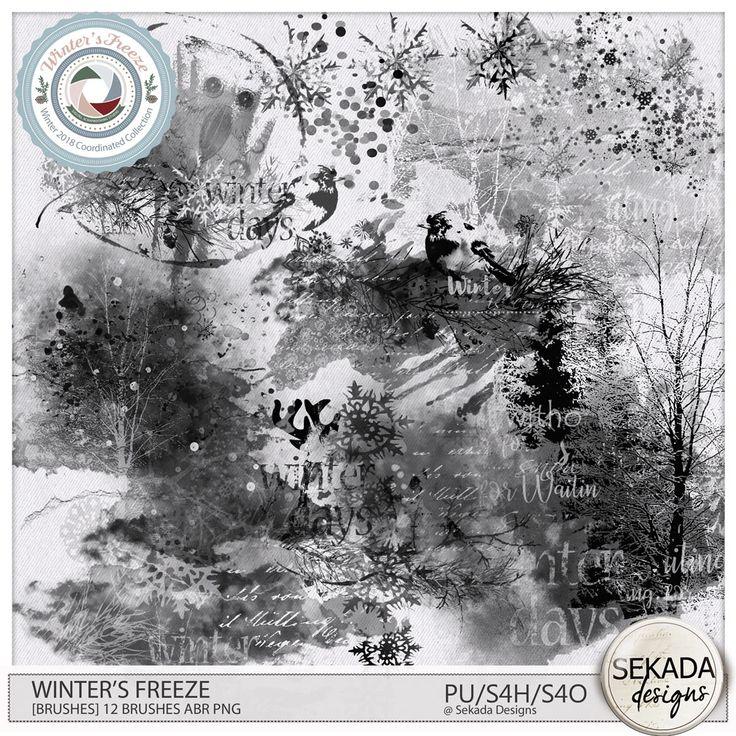 Digital Art :: Photoshop Tools :: Winters Freeze [Brushes] by Sekada Designs