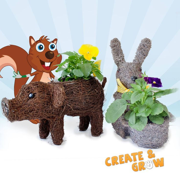 Our last Create & Grow of the summer programme is on Monday 2 September.  Children can plant a beautiful animal basket. Drop in between 10 - 4pm - all centres (except Chertsey).  This activity is also repeated on Wednesday 4 September at Badshot Lea, Crawley, Shepperton, Twickenham and Washington.