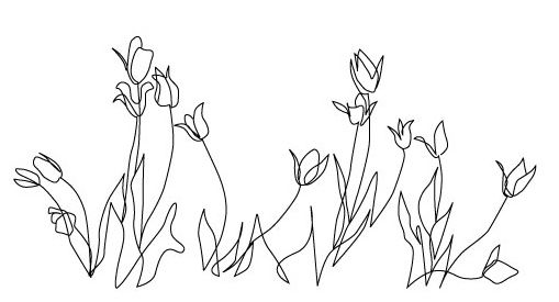 Wire Art of Tulips